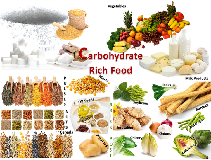 top-carbohydrate-foods