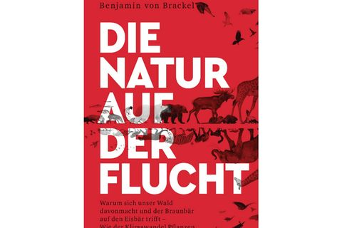 natur-cover-weiss